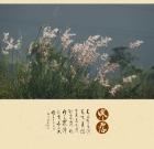 今天寒露2019.10.08